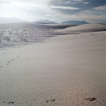 whitesands_010