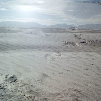 whitesands_011