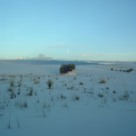 whitesands_05